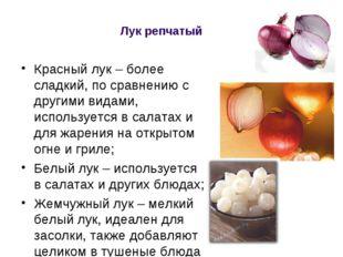Лук репчатый Красный лук – более сладкий, по сравнению с другими видами, испо