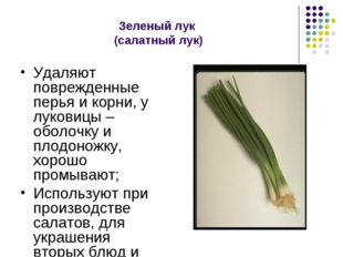 Зеленый лук (салатный лук) Удаляют поврежденные перья и корни, у луковицы – о