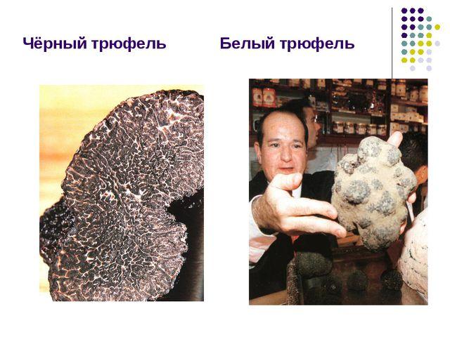 Чёрный трюфель Белый трюфель
