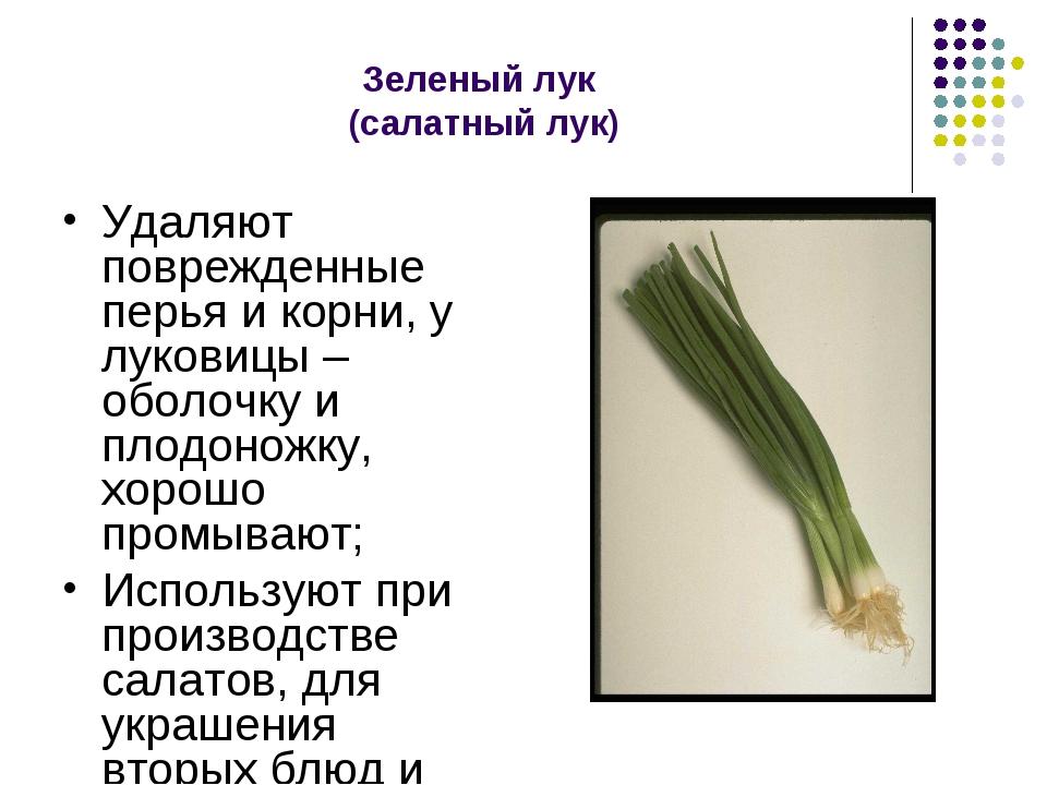 Зеленый лук (салатный лук) Удаляют поврежденные перья и корни, у луковицы – о...