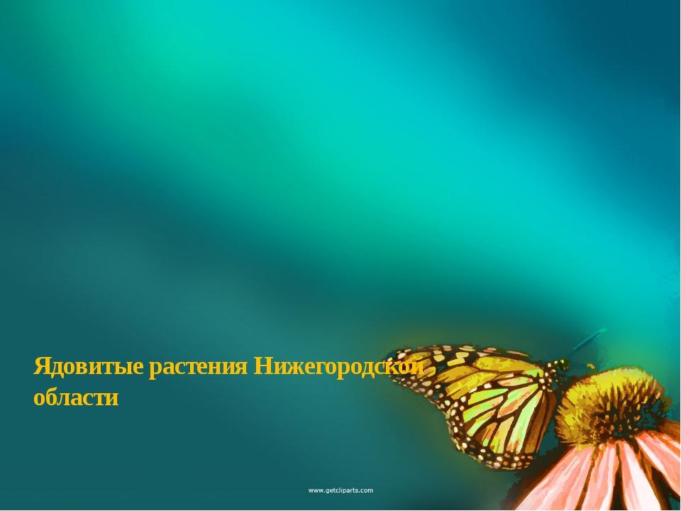 Ядовитые растения Нижегородской области Образец текста Второй уровень Третий...