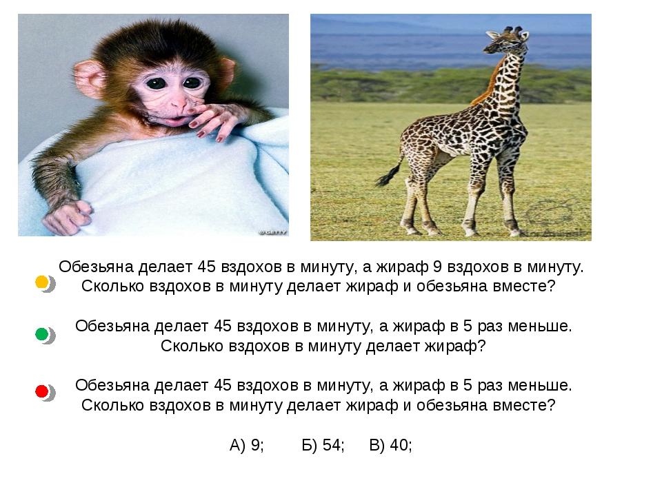 Обезьяна делает 45 вздохов в минуту, а жираф 9 вздохов в минуту. Сколько взд...