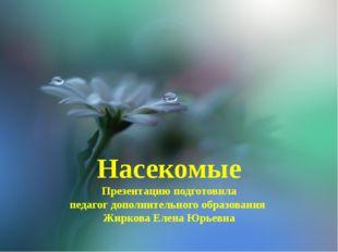 Насекомые Презентацию подготовила педагог дополнительного образования Жиркова