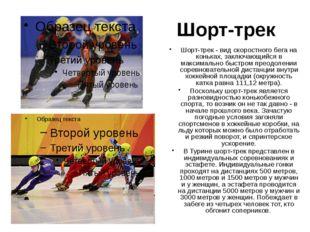 Бобслей Бобслей — это скоростной спуск по специально изготовленной ледяной тр