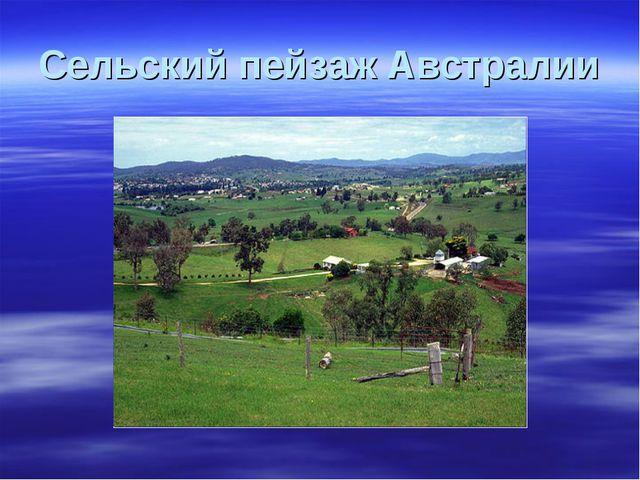 Сельский пейзаж Австралии