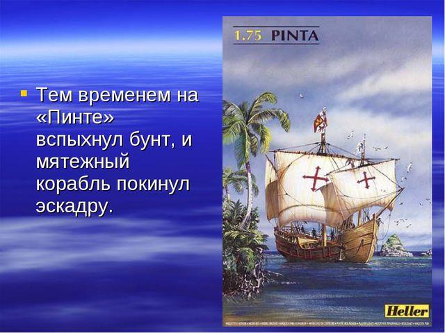 Тем временем на «Пинте» вспыхнул бунт, и мятежный корабль покинул эскадру.