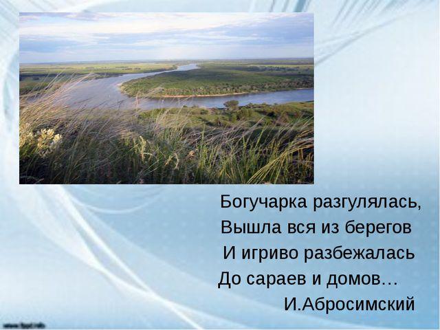 Богучарка разгулялась, Вышла вся из берегов И игриво разбежалась До сараев и...