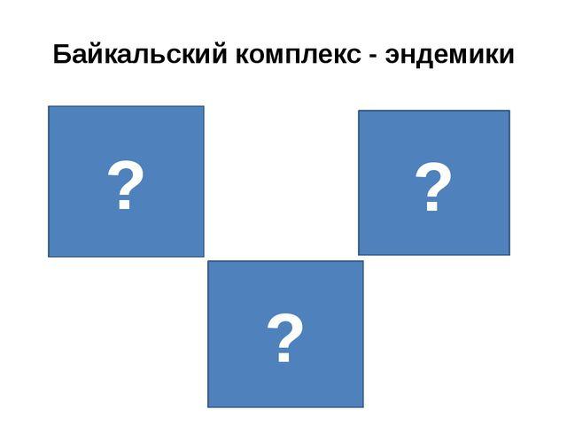 Байкальский комплекс - эндемики ? ? ? ?