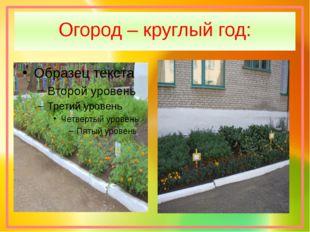 Огород – круглый год: