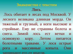 Знакомство с текстом Лось. Лось обитает в лесах под Москвой. У лесного велика