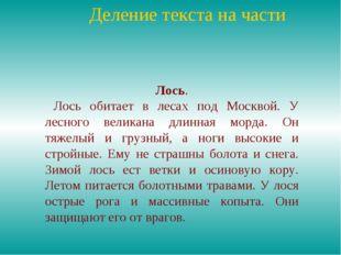 Деление текста на части Лось. Лось обитает в лесах под Москвой. У лесного ве