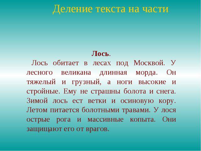 Деление текста на части Лось. Лось обитает в лесах под Москвой. У лесного ве...