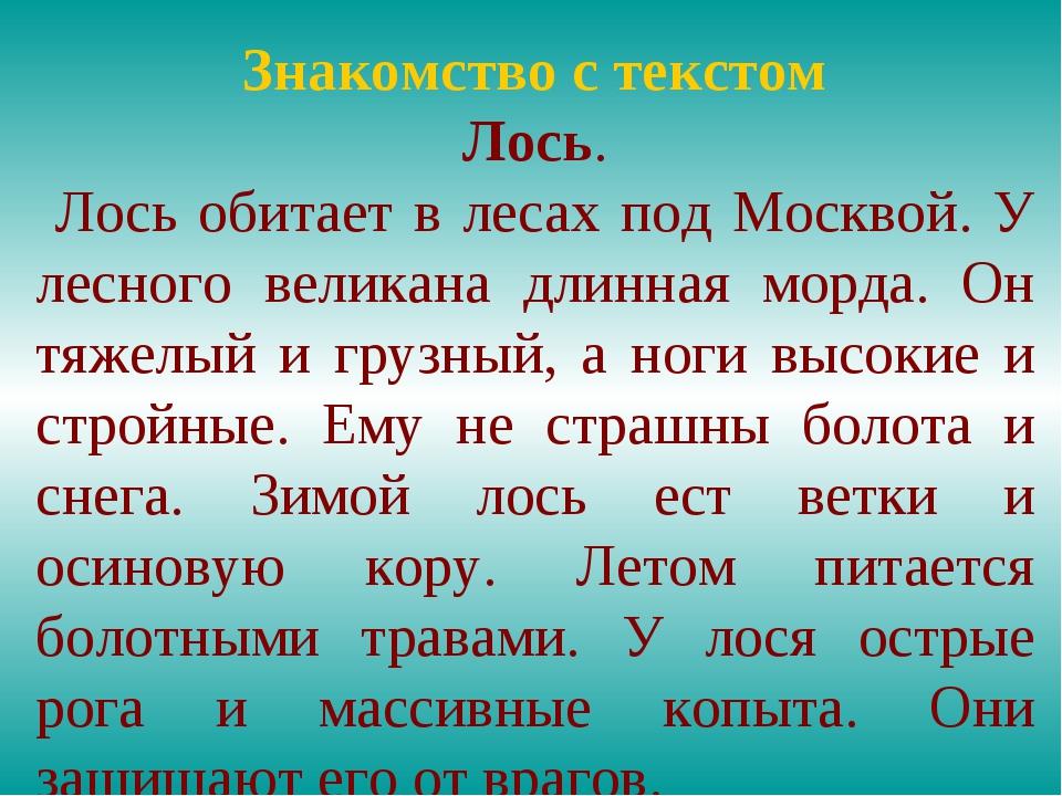Знакомство с текстом Лось. Лось обитает в лесах под Москвой. У лесного велика...
