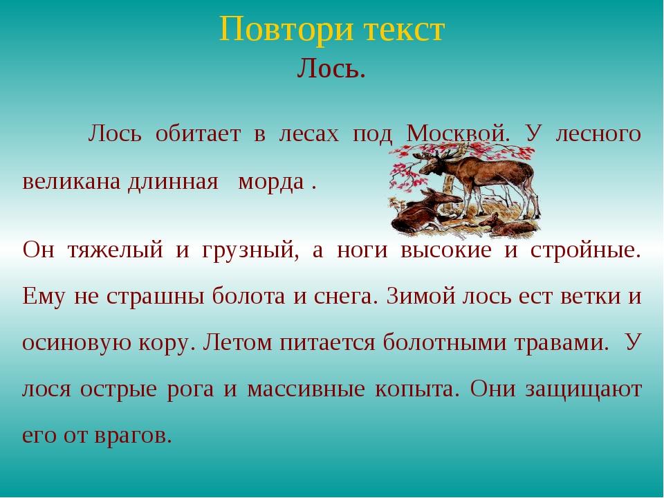 Повтори текст Лось. Лось обитает в лесах под Москвой. У лесного великана дли...