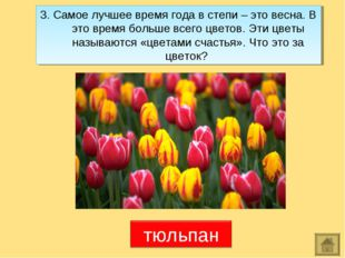 3. Самое лучшее время года в степи – это весна. В это время больше всего цвет