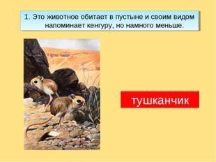 1. Это животное обитает в пустыне и своим видом напоминает кенгуру, но намног