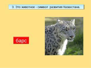 3. Это животное - символ развития Казахстана.