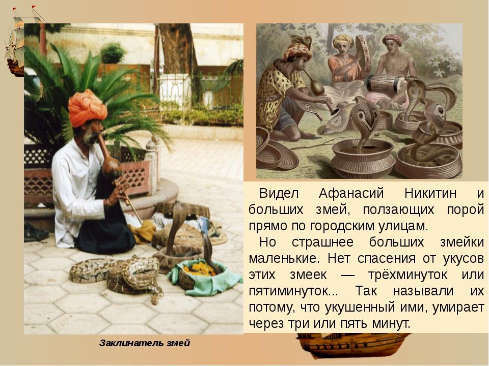 Удивлялся Афанасий Никитин слонам, которые всякую работу тяжёлую выполняют.
