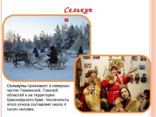 Селькупы Селькупыпроживают в северных частях Тюменской, Томской областей и н