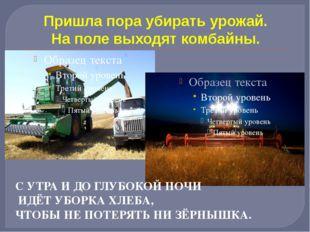 Пришла пора убирать урожай. На поле выходят комбайны. С УТРА И ДО ГЛУБОКОЙ НО