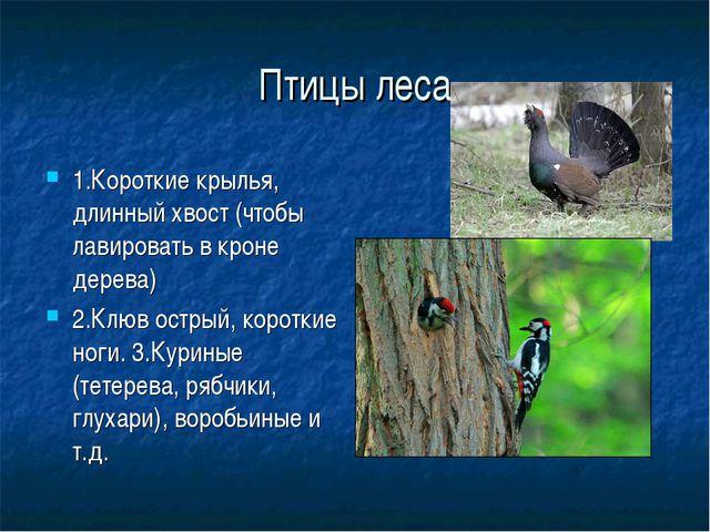 Птицы леса 1.Короткие крылья, длинный хвост (чтобы лавировать в кроне дерева)...