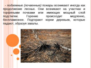 - подземные (почвенные) пожары возникают иногда как продолжение лесных. Они в