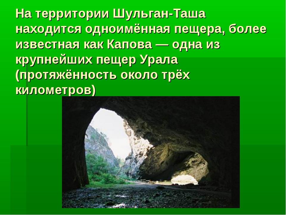 На территории Шульган-Таша находится одноимённая пещера, более известная как...