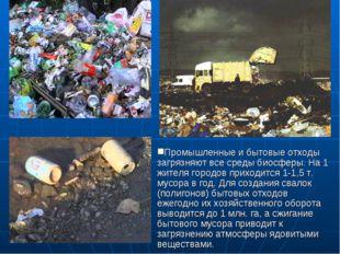 Промышленные и бытовые отходы загрязняют все среды биосферы. На 1 жителя горо