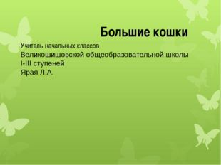 Учитель начальных классов Великошишовской общеобразовательной школы I-III сту