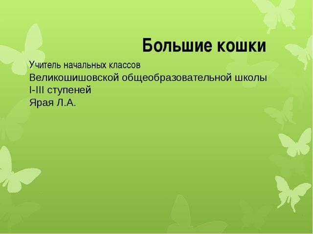 Учитель начальных классов Великошишовской общеобразовательной школы I-III сту...