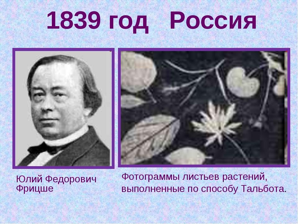 1839 год Россия Юлий Федорович Фрицше Фотограммы листьев растений, выполненны...