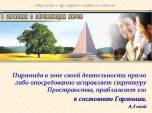 Пирамида в зоне своей деятельности прямо либо опосредованно исправляет структ