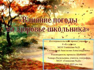 Исследовательский проект ученицы 6 «Б» класса МОУ Гимназия №23 Соловьёвой Ана