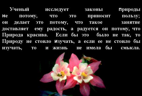 http://festival.1september.ru/articles/312622/image1.jpg