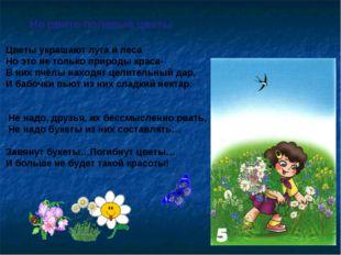 Не рвите полевые цветы Цветы украшают луга и леса Но это не только природы кр