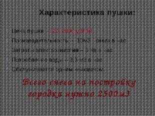 Характеристика пушки: Цена пушки – 332 889 рублей Производительность - 10м3 с