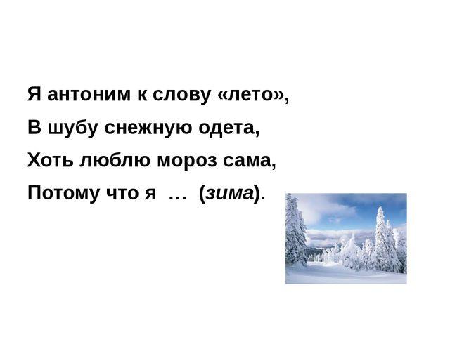 Я антоним к слову «лето», В шубу снежную одета, Хоть люблю мороз сама, Потом...