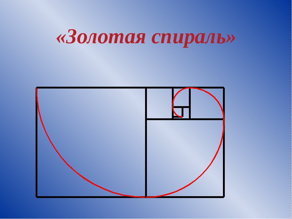 «Золотая спираль»
