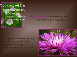 Ботаника – наука о растительных объектах живой природы. От одноклеточных фор