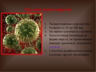Организация вирусов Распространены повсеместно. Размеры от 20 до 300 нм. Не и