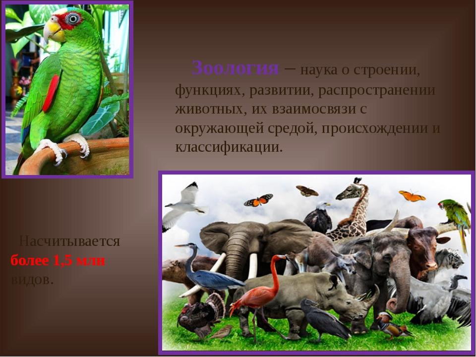 Зоология – наука о строении, функциях, развитии, распространении животных, и...
