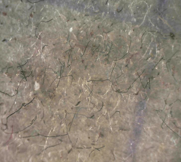 F:\папка с пылью\срорт зал.BMP