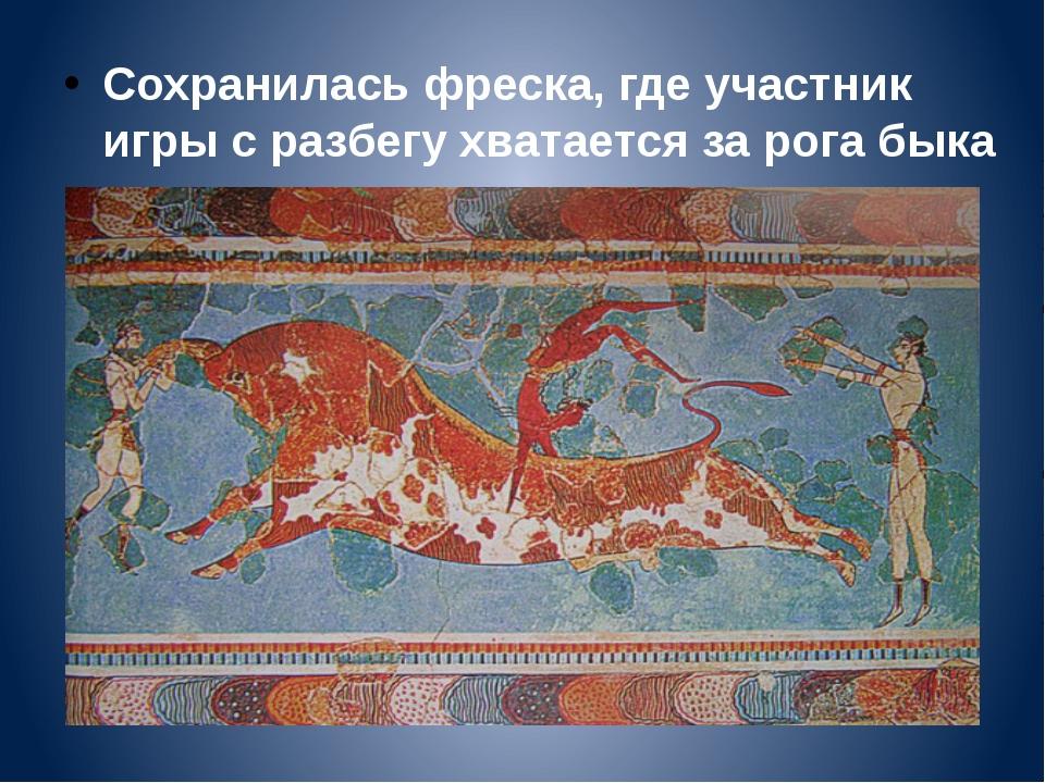 Сохранилась фреска, где участник игры с разбегу хватается за рога быка