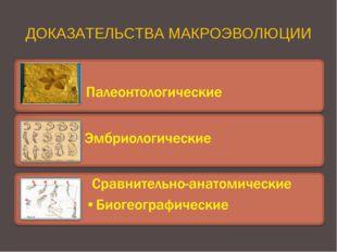 ДОКАЗАТЕЛЬСТВА МАКРОЭВОЛЮЦИИ