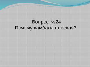 Вопрос №24 Почему камбала плоская?