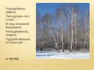 Чародейкою зимою Околдован лес стоит – И под снежной бахромою Неподвижною, не