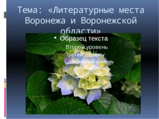Тема: «Литературные места Воронежа и Воронежской области» Проект 1.