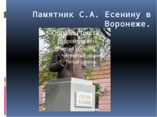 Памятник С.А. Есенину в Воронеже.