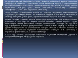 На пересечении улиц Моисеева и 20-летия Октября в Воронеже за оградой располо