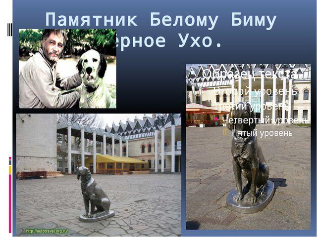 Памятник Белому Биму Чёрное Ухо.